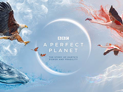 "David Attenborough ""A Perfect Planet: Humans"" Worksheet"