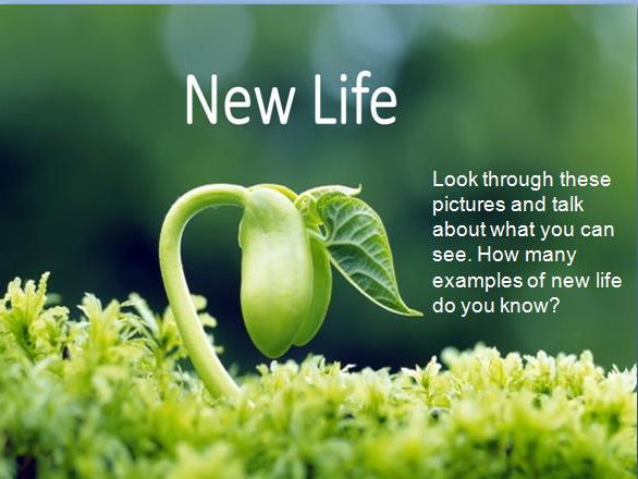 Christian New Life - R.E lesson pack including Easter Story