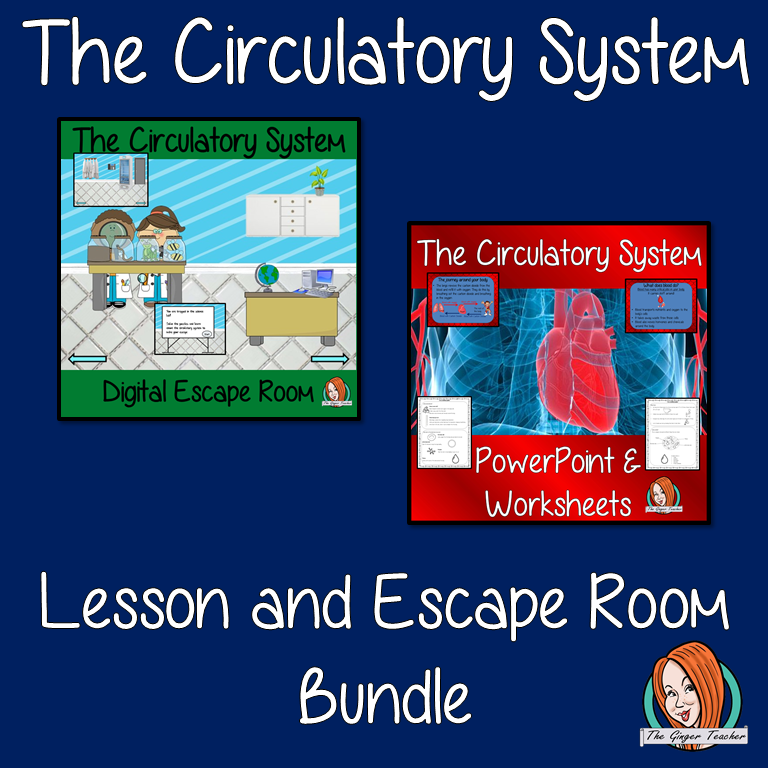 Blood and the Circulatory System Lesson and Escape Room Bundle