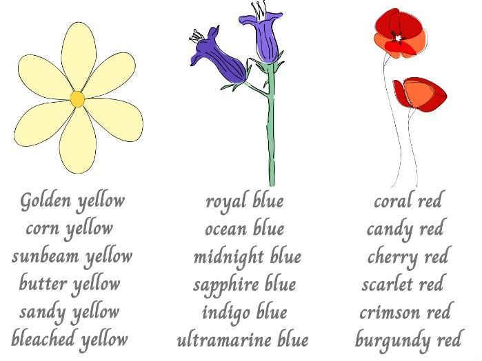 Flower colour synonyms