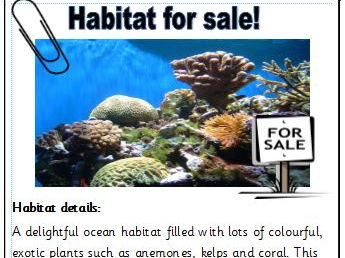 Living things and their habitats KS1 - activity pack