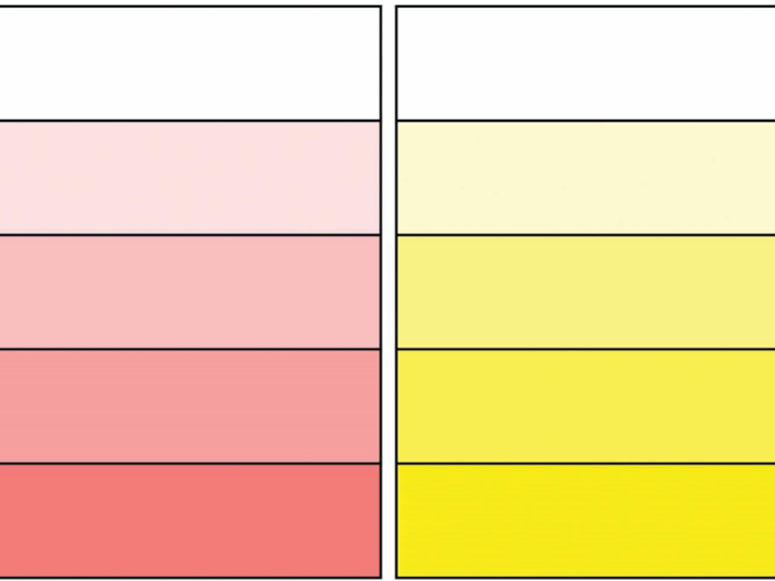 Synonym Template (Blank & Colour)