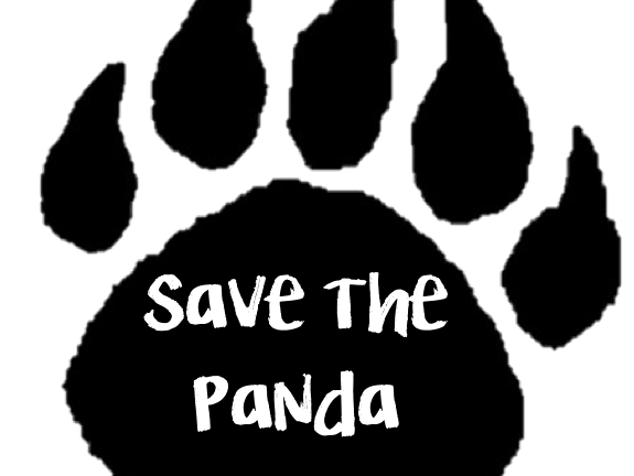 Interdisciplinary Learning - Save the Panda