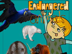 STEM Be an Endangered Animal Detective - Identify and Solve Problems STEM Be an Endangered Animal D