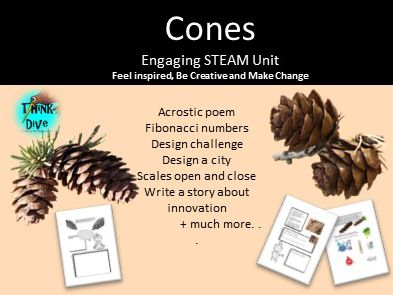 Cones, Project Based Learning: STEAM, KS1, NGSS, Biomimicry