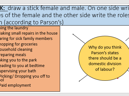 Parsons domestic division of labour