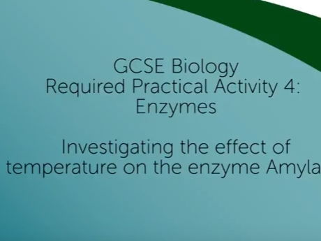 GCSE Biology Required Practical 4 Investigating the Effect of Temperature on the enzyme Amylase