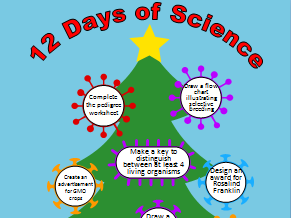 The Twelve Days of Science (Festive Homework)