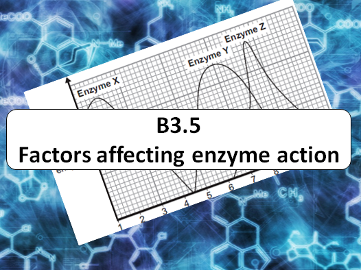 GCSE - Factors affecting Enzyme Action (AQA B3.5) (Required PRAC)