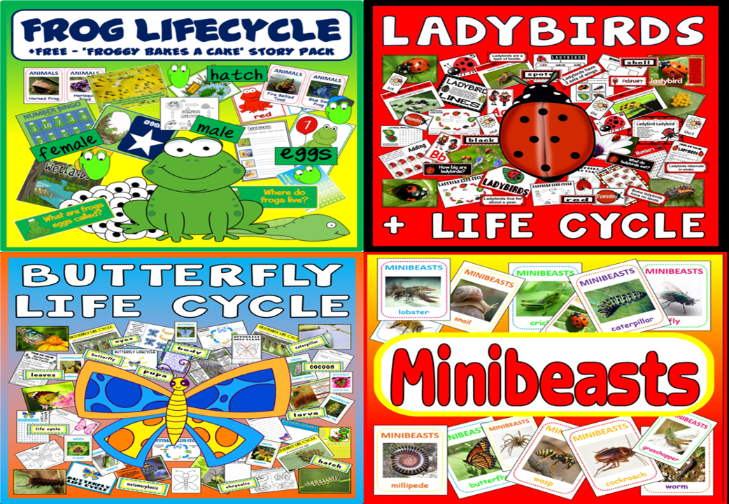 * BUNDLE* ANIMAL AND INSECT LIFE CYCLE RESOURCES - SCIENCE MINIBEASTS BUTTERFLIES FROG LADYBIRD / LADYBUG
