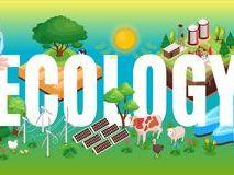 Ecology Notes A level Biology