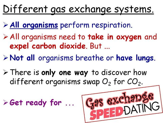 Comparing Gas Exchange Systems Year 8 Lesson PowerPoint (KS3 8Cd) Breathing and Respiration topic