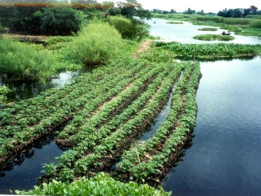 WATER EQ3 Lesson 9 Sustainable approaches to water management Edexcel A Level Geography