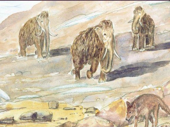 Nidderdale Rocks - Image resources