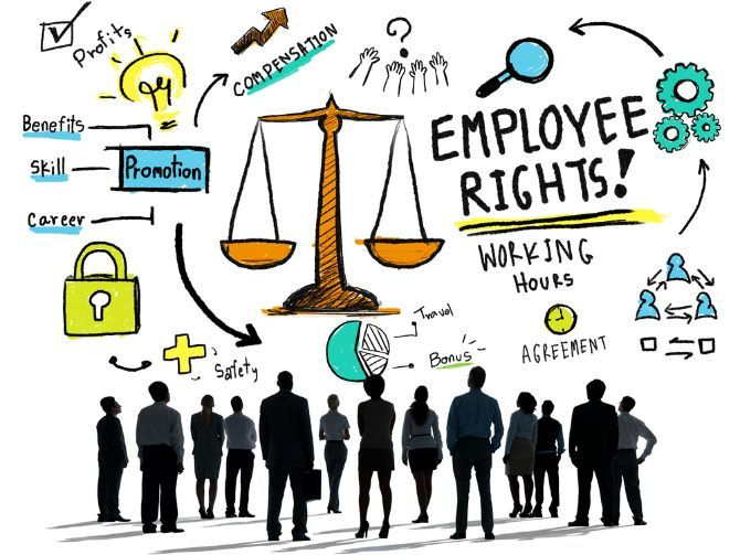 BTEC Level 3 Business Unit 24: Employment Law Resource Pack