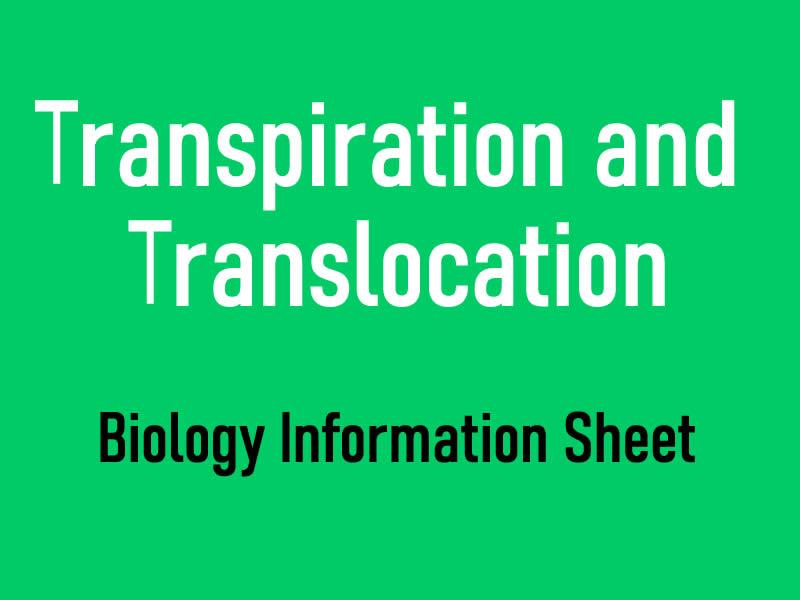 Transpiration and Translocation Information Sheet