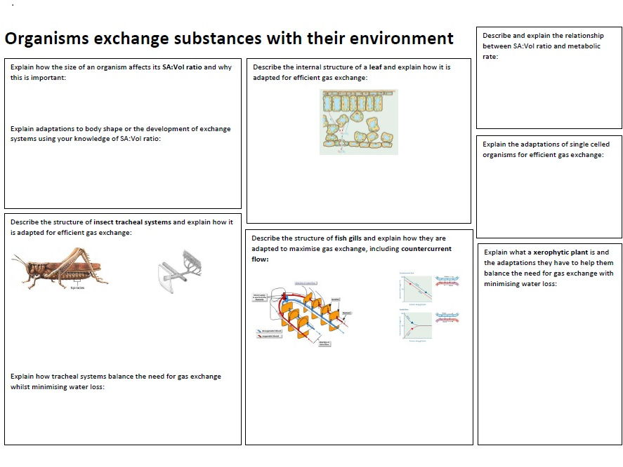 AS Biology AQA Section 3.3 Organisms Exchange Substances with their Environment Revision Booklet