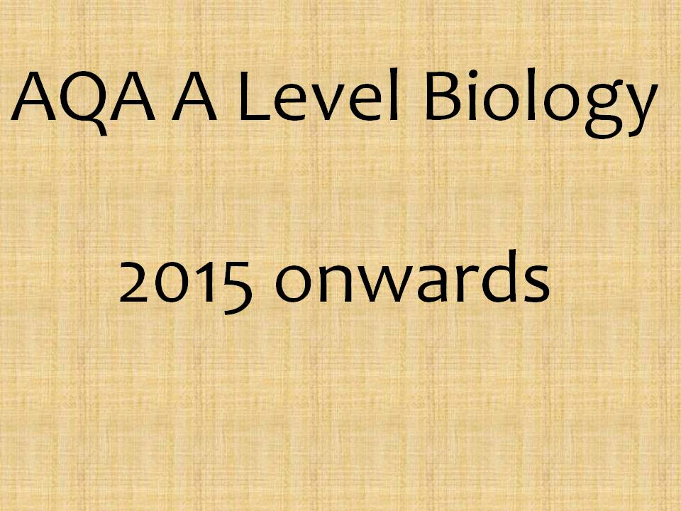 AQA AS Biology Structure of the Heart and Blood Vessels ...