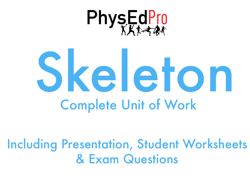 GCSE PE – Skeleton – Skeletal System -  Unit of Work - Worksheet, Powerpoint, Exam Questions – IGCSE