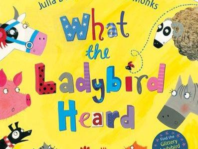 What the Ladybird Heard Julia Donaldson Reading Comprehension for Full Book