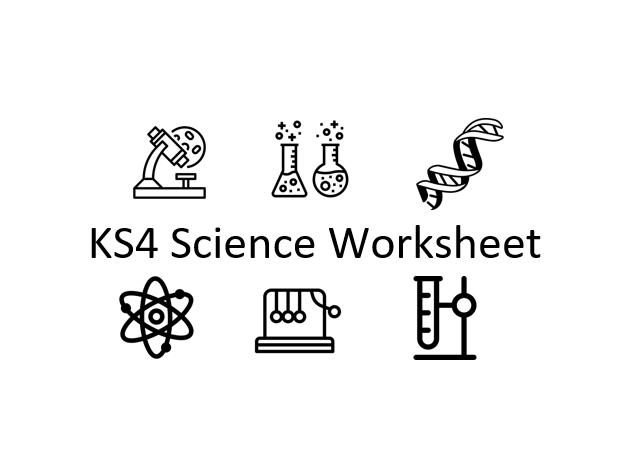 KS4 Revision Worksheet: Ecosystems