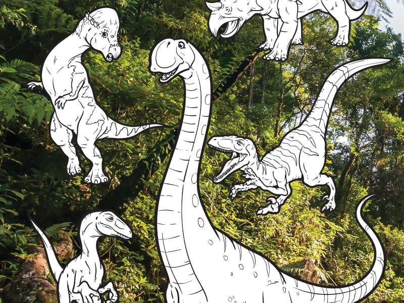 Dinosaur Colouring in / display (2)