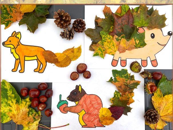 Woodland Animal Templates Free Download