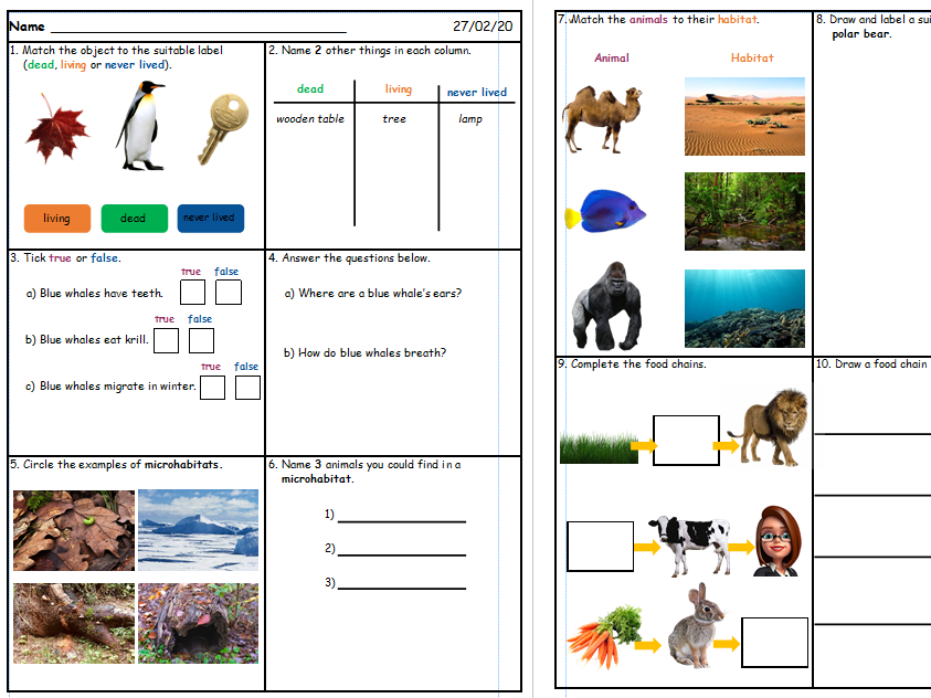 Science Quiz - Habitats and Food Chains