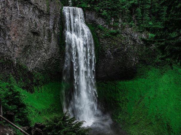 Lauris Dorothy Edmond 'Waterfall' - Poem Analysis