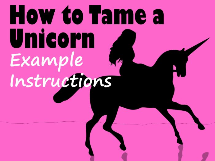 Unicorn-Themed Example Instructional Text - How to Tame a Unicorn