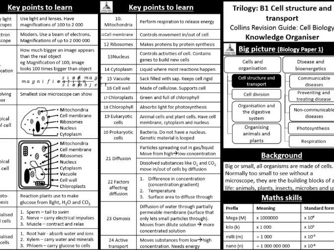 GCSE SCIENCE KNOWLEDGE ORGANISERS
