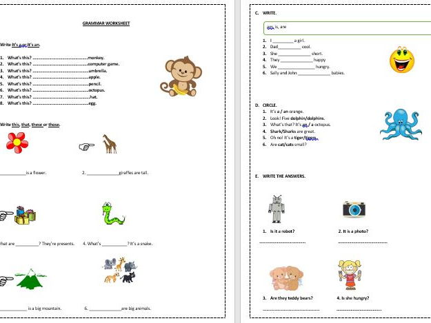 Beginners in English essential grammar and vocabulary worksheets bundle