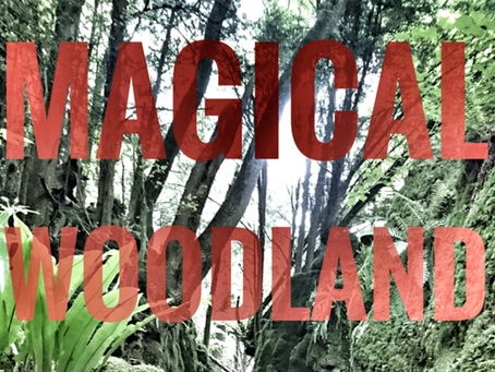 Art and Creative Writing. Magical Woodland Scenes