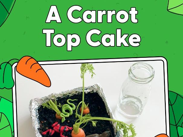 Activity - A Carrot Top Cake