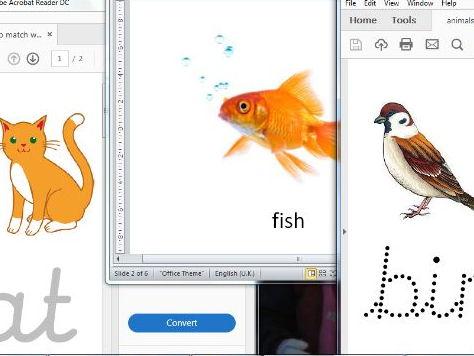 easy animal names tasks suitable for SEND pupils