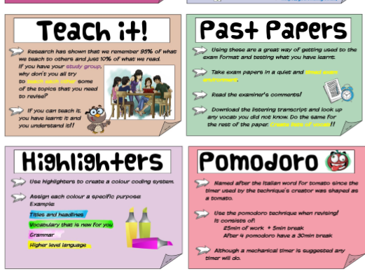 Revision Techniques Display (MFL)