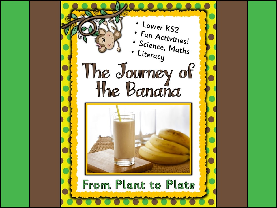 From Plant to Plate: The Journey of the Banana Activities Part 3