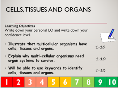 KS3 B3.1 Cells, Tissues and Organs