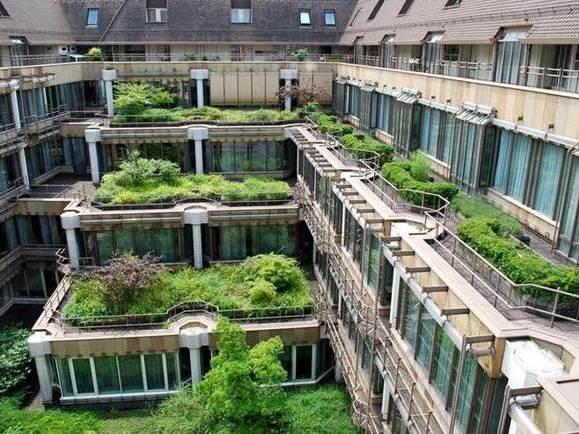 Contemporary Urban Environments Case Study