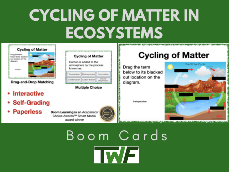 Cycling of Matter in Ecosystems Boom Cards
