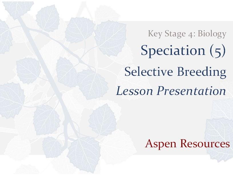 Selective Breeding  ¦  Key Stage 4  ¦  Biology  ¦  Speciation (5)  ¦  Lesson Presentation