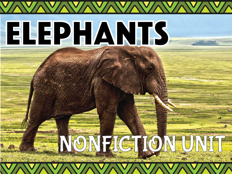 Elephant Nonfiction Unit