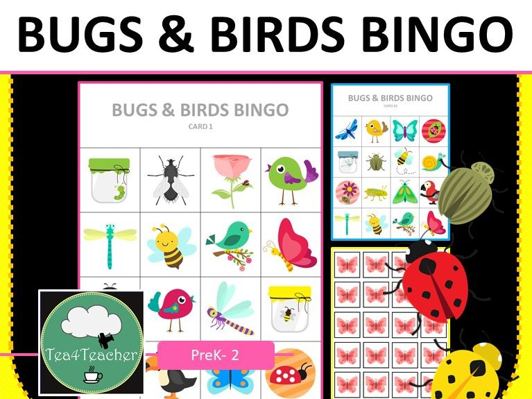 Bugs and Birds Bingo Game Insects