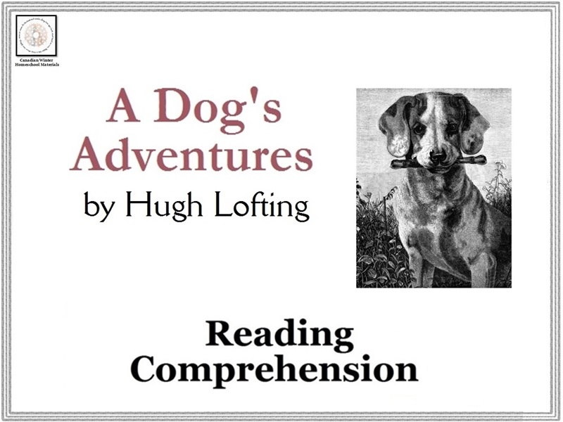 The Story of Quetch - A Dog's Adventures