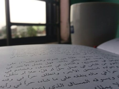 Speak, Write And Play In Arabic The Fun Way!