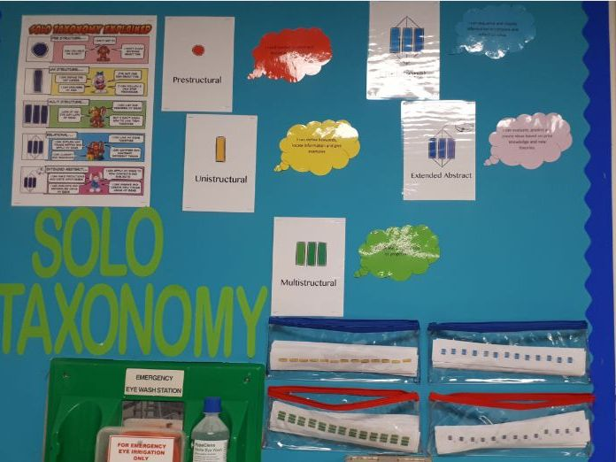 Solo Taxonomy stickers for exercise books