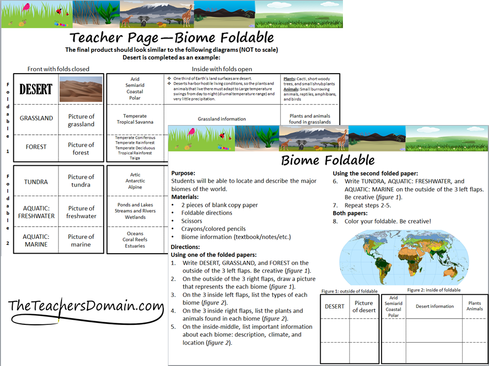 World Biomes Foldable