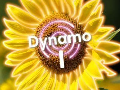Dynamo 1, Module 3