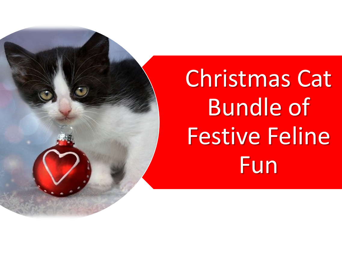 Christmas Cat Bundle of Fun