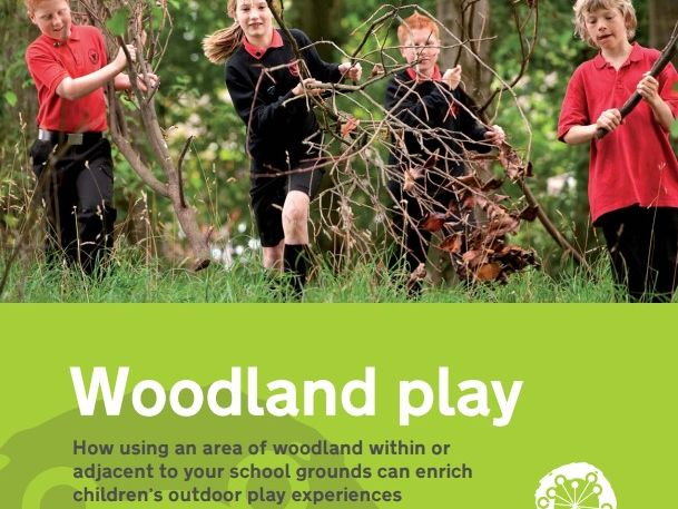 Woodland Play in Schools